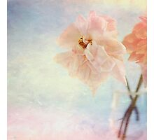 Watercolour Roses Photographic Print