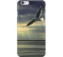 Jonathan Livingston Seagull  iPhone Case/Skin