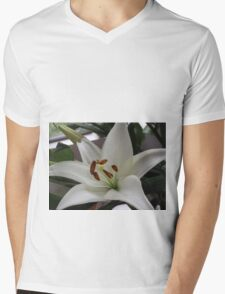 Wonderfully White With Super Stamens Mens V-Neck T-Shirt