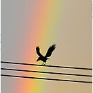 A Raven at the End of the Rainbow by kibishipaul