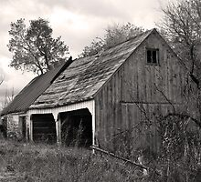 Decaying Garage by Timothy S Price