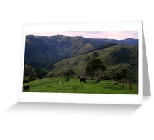 Bovine Views Greeting Card