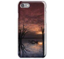 Lake Bonney iPhone Case/Skin
