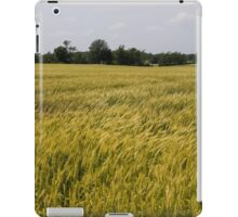 Golden Wheat Harvest, Ripening In The Wind iPad Case/Skin