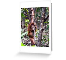 Lonely ape Greeting Card