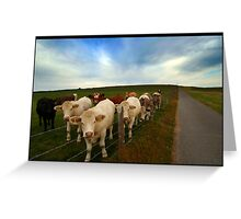 Cow Hill Greeting Card