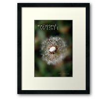 Exposed Wish © Vicki Ferrari Framed Print