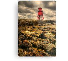 Seaweed Groyne Herd Metal Print