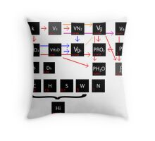 Calculations Throw Pillow