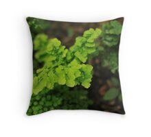 Softer - Mt Coot-tha Botanic Gardens  Throw Pillow