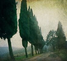 Toscana Vintage by Lena Weiss