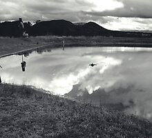 Skipping Stones  by Michael Stocks
