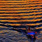 Rainbow colours by Edgar023