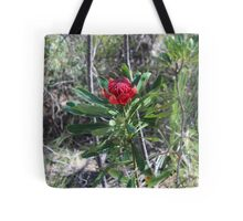 Nature - Native Australian Waratah Flower Tote Bag