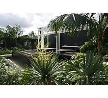 Canary Island Spa Garden Photographic Print