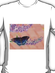 Brown and Blue Butterfly on Peach T-Shirt