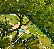 Mughal Garden in Progress by Yashdeepsharma