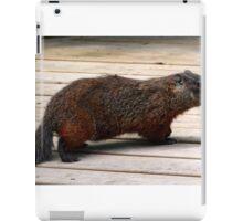 Momma Woodchuck iPad Case/Skin