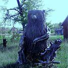 Root Bear!!! by Larry Trupp