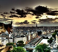 Gargoyle over Notre Dame by Nadeson