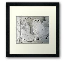 Night Owl Drawing Framed Print