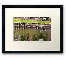 Formation Flight on the River Ouse - York Framed Print
