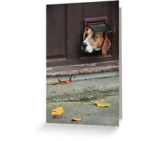 A Window to the World Greeting Card
