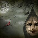 The Prisoner by MarieG