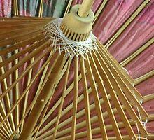 Madamme Butterfly - a look inside  by PaulineSherlock