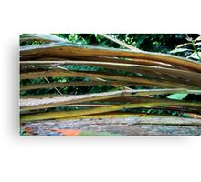 Cracking Branch  Canvas Print