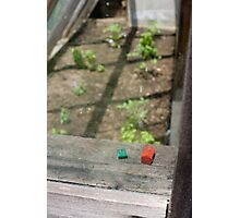Monopoly properties in the greenhouse Photographic Print