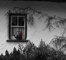 Window Pot - Bunratty Castle Grounds, Limerick, Ireland by ArtsGirl2
