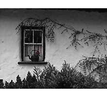 Window Pot - Bunratty Castle Grounds, Limerick, Ireland Photographic Print