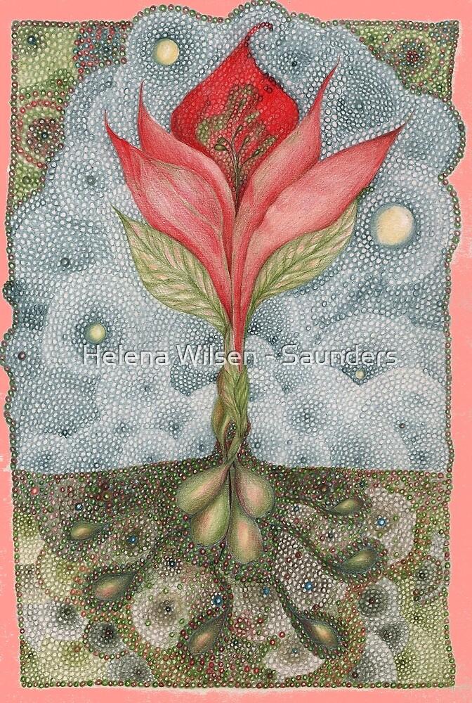 Floribunda Indiennae by Helena Wilsen - Saunders
