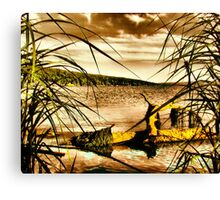 Hand Colored? Canvas Print