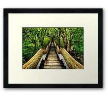 Dragon Steps Framed Print