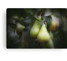 Taste Of Summer Canvas Print