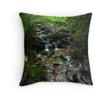 Bound for Leamlara Throw Pillow