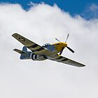P51D Mustang - Ferocious Frankie by Nigel Bangert