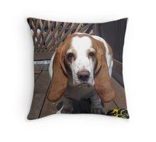 Meet Homer Throw Pillow