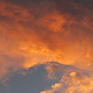Orange In The Sky by Linda Miller Gesualdo