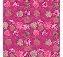 Raspberry Photographic Print