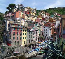 Riomaggiore, Italy by Philip  Brown