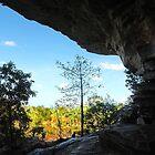 The overhang of Ubirr Rock by georgieboy98