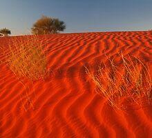Sundown,Simpson Desert by Joe Mortelliti