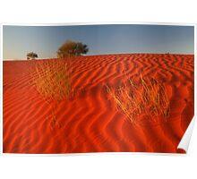 Sundown,Simpson Desert Poster