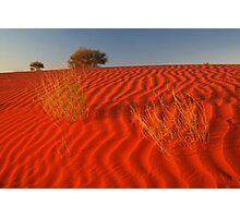 Sundown,Simpson Desert Photographic Print