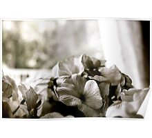 Flowers for my wedding day Poster