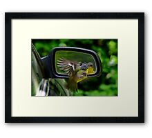 """Flying In The Face Of Opposition"" Framed Print"