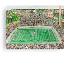 Spartan Stadium Canvas Print